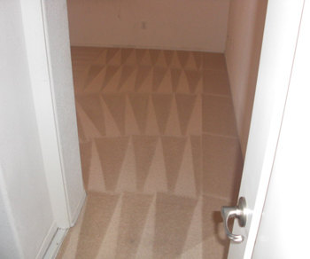 Carpet Cleaning Upholstery Cleaning Flood Clean Up